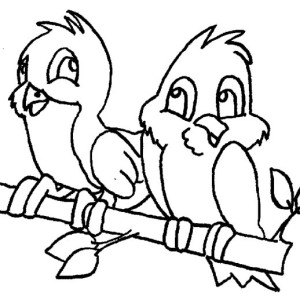 Cute Couple of Robin Bird Coloring Page