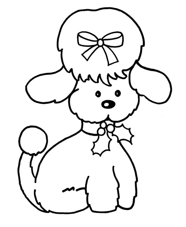 dog cute female dog coloring page cute female dog coloring pagefull size image