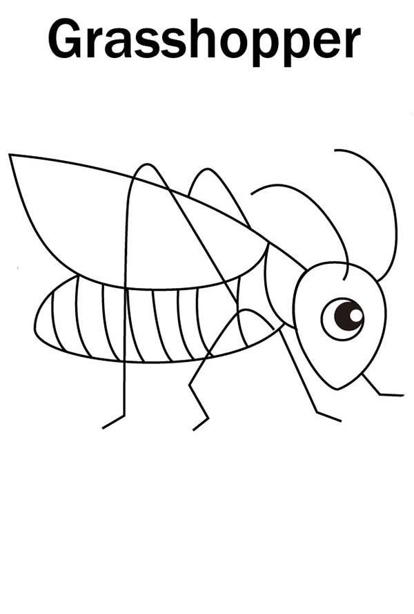 Cute Little Grasshopper Coloring Page