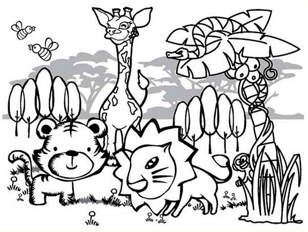 Print Cute Rainforest Animals Coloring Page In Full Size