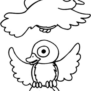 Drawing Robin Bird Coloring Page
