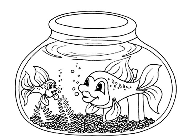 Fish with Long Tail in Fish Bowl Coloring Page Download Print