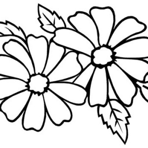 Flower for Wedding Party Coloring Page