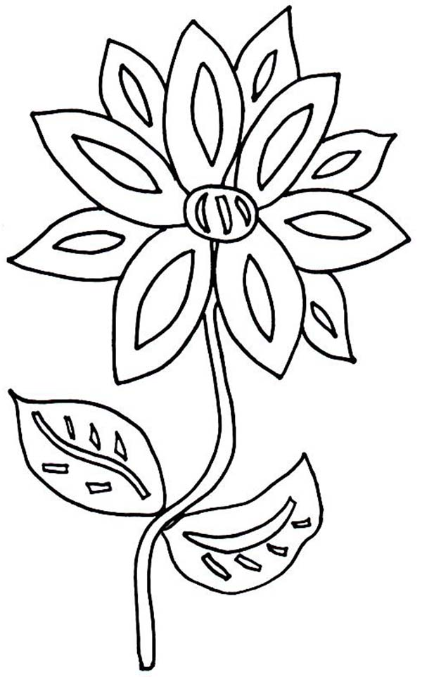 Flower in the Front Yard Coloring Page Download Print
