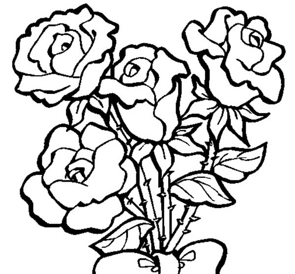 Four Roses in Rose Coloring Page Four Roses in Rose Coloring Page
