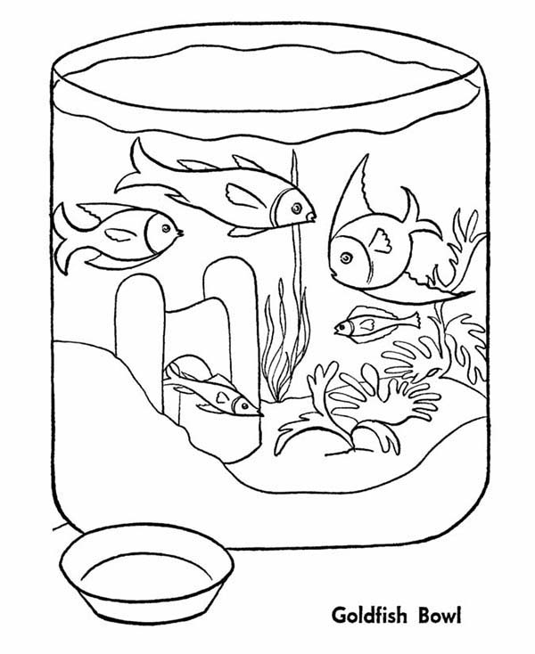 Goldfish in Fish Bowl Coloring Page Download Print Online