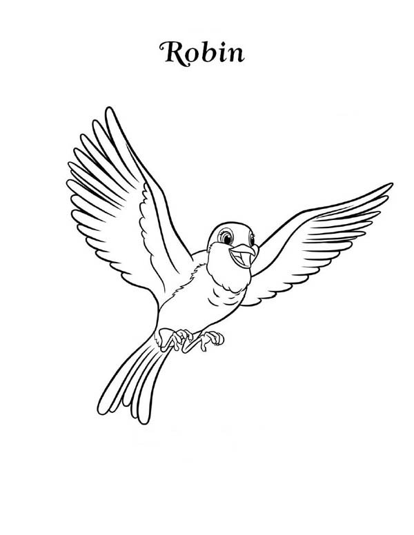 Happy Robin Bird Coloring Page Download Print Online Coloring