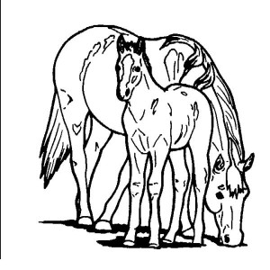 Horse Eating with Baby Horse in Horses Coloring Page