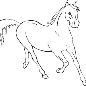 Horse Running Fast in Horses Coloring Page