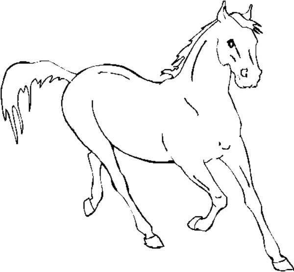 Horse Running Fast in Horses Coloring Page - Download & Print Online ...