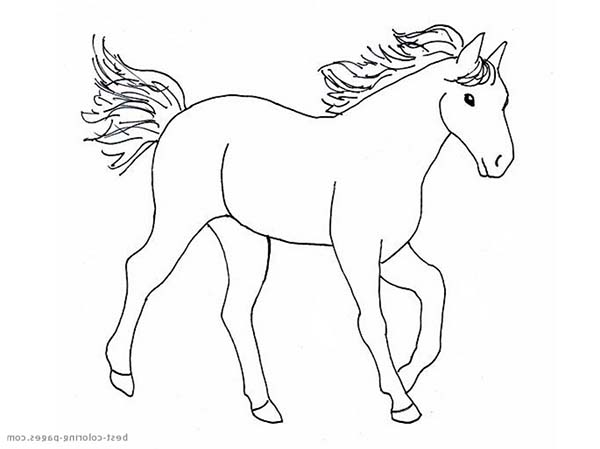 Horse With Flying Mane In Horses Coloring Page