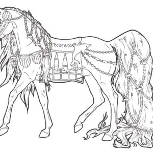 horse with long ponytail in horses coloring page - Horse Coloring Page