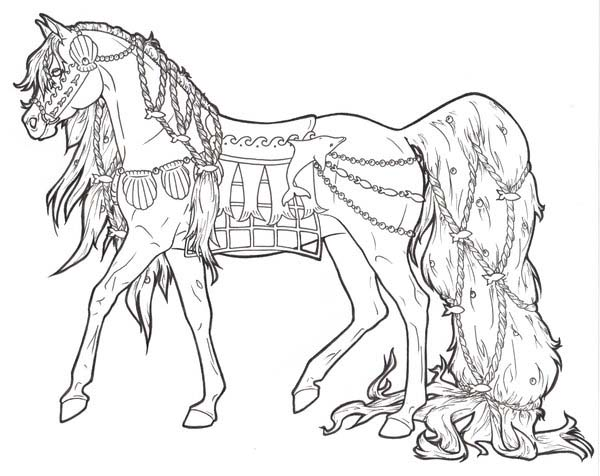 horse with long ponytail in horses coloring page - Horse Color Pages