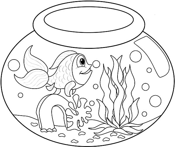 Long Tailed Fish in Fish Bowl Coloring Page Download Print