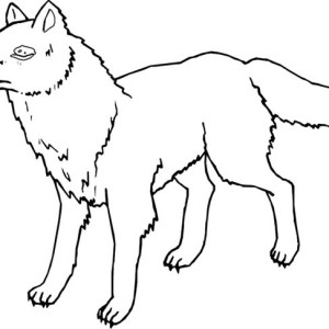 Minnesota Wolf Coloring Page