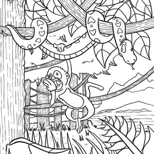 Amazon Rainforest Animals Coloring