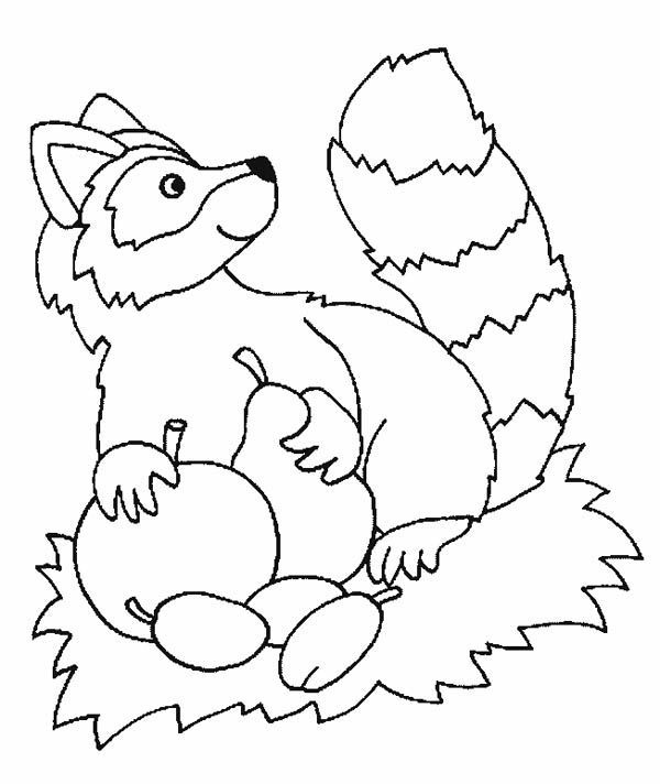 chester the cat coloring pages - photo#6