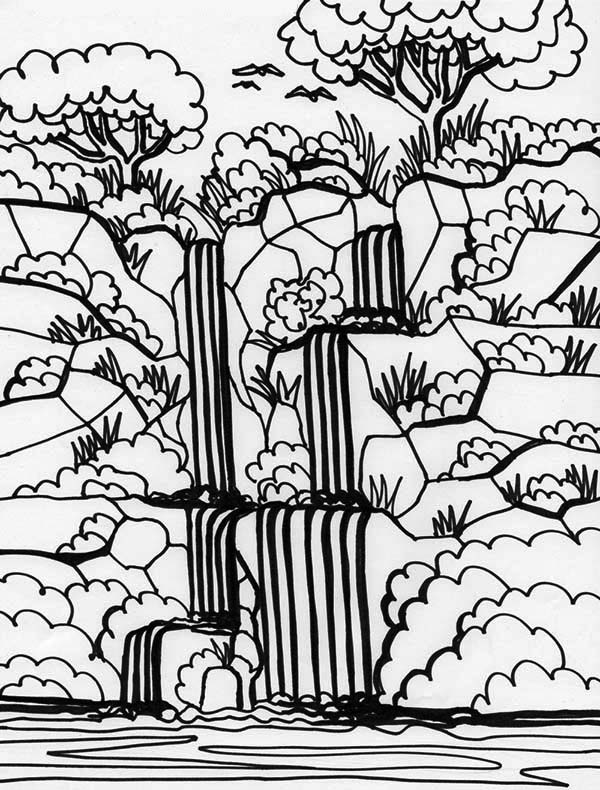 Rainforest plants and flowers coloring pages - photo#20