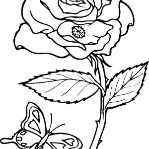 Rose and Butterfly Coloring Page