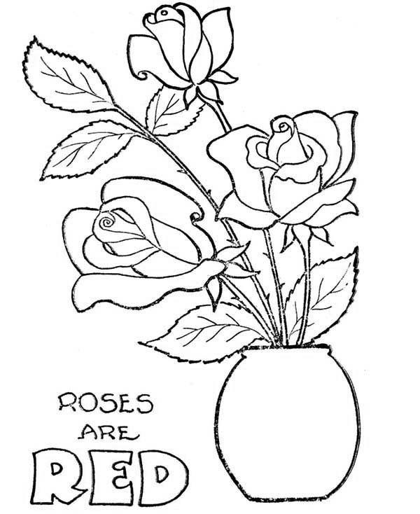 Rose In Flowerpot Coloring Page
