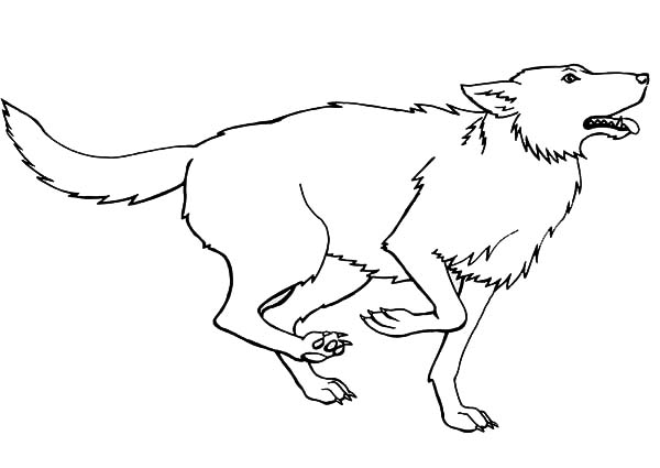 Running for Prey Wolf Coloring Page Download Print Online