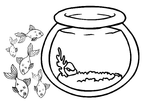 School of Fish Outside Fish Bowl Coloring Page Download Print