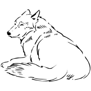 wolf rain coloring pages - photo#16