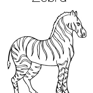 strong zebra coloring page