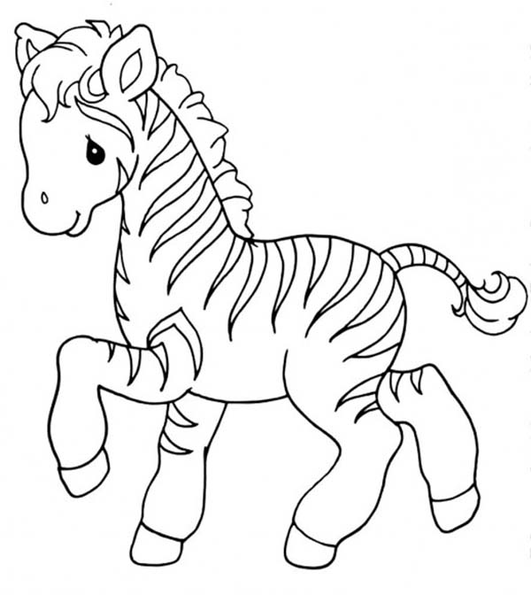 print sweet little zebra coloring page in full size