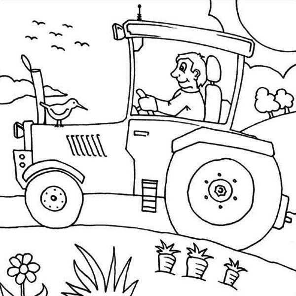 tractor plowing carrot farm coloring page - John Deere Combine Coloring Pages