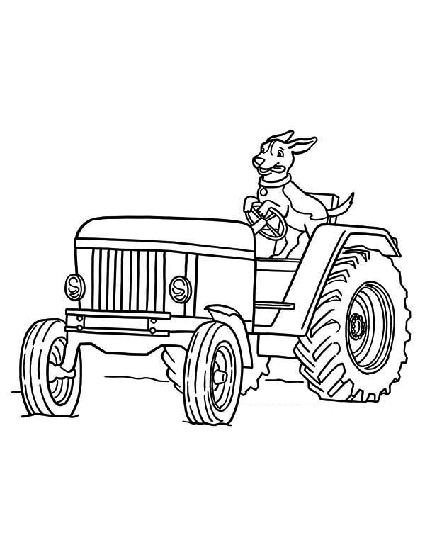 Tractor and a Dog Coloring Page
