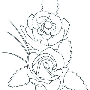 Two Beautiful Rose Coloring Page