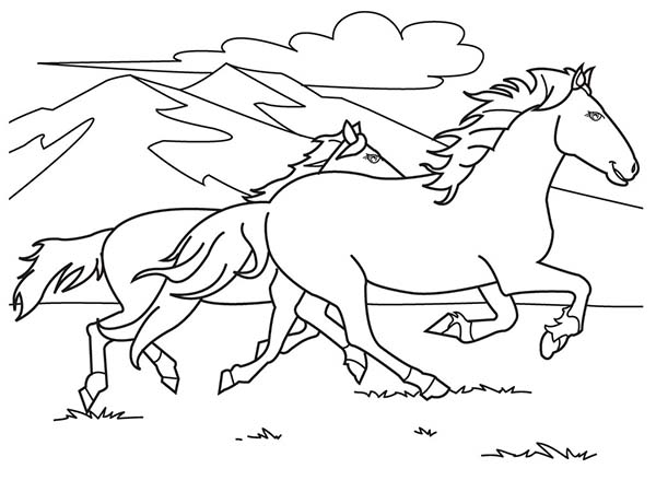 Two Horses Running on the Hill Coloring Page - Download & Print ...