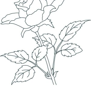 What a Lovely Thing a Rose Coloring Page