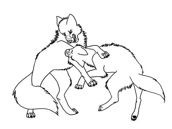 Wolf Fighting Coloring Page: Wolf Fighting Coloring Page – Color ...