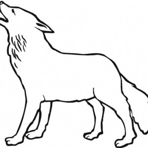 Wolf Howling in the Night Coloring Page