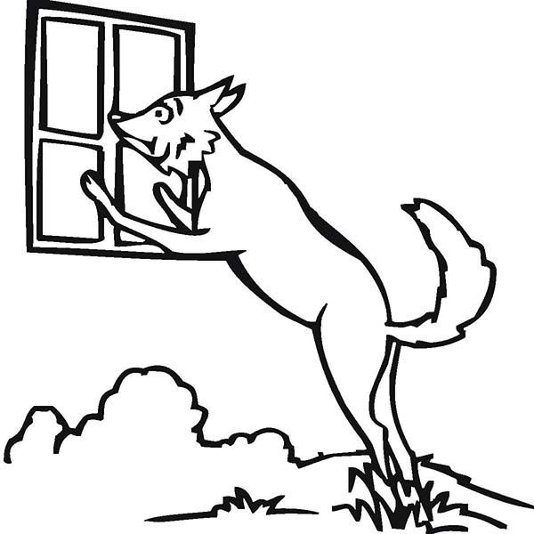 Wolf Peeking At Window Coloring Page