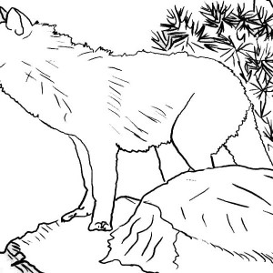 christmas wolf coloring pages | Download Online Coloring Pages for Free - Part 56