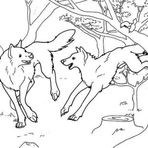 Wolves Playing in the Forest Coloring Page
