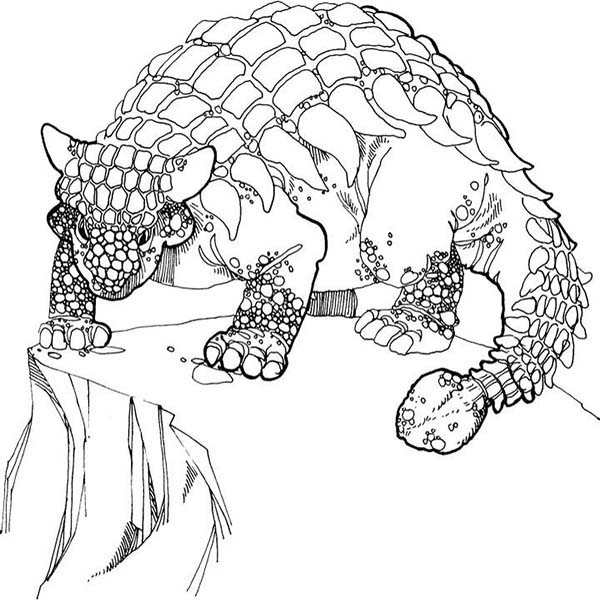 Ankylosaurus Stand At The Edge Of The Cliff Coloring Page