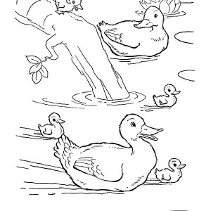 Awesome Drawing of Duckling and Their Mom Coloring Page