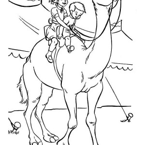 Camel Riding on Circus Coloring Page