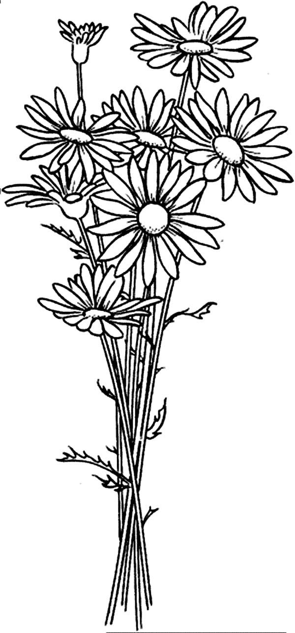 Daisy Flower Arrangement Coloring Page Daisy Flower Arrangement