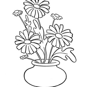 Blooming Daisy Flower Coloring Page Blooming Daisy Flower