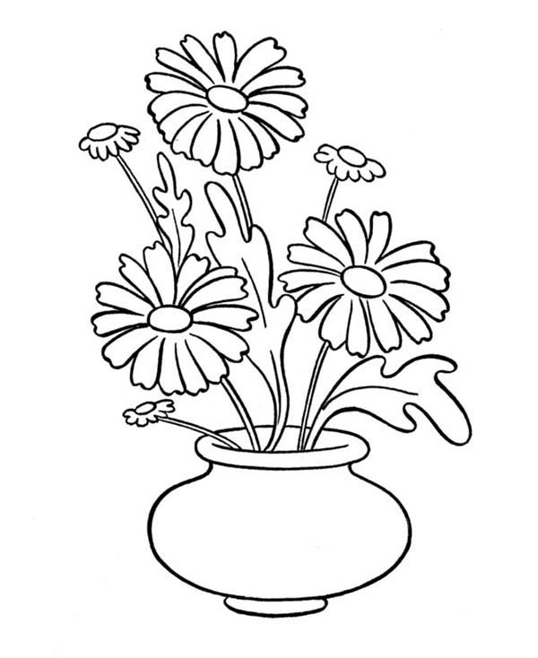 Daisy Flower In Vase Coloring Page in  Download Print Online