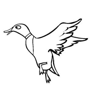 Duckling Learn to Fly Coloring Page