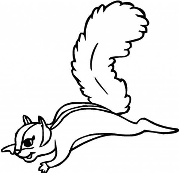 Flying Squirrel Coloring Page - Download & Print Online Coloring ...