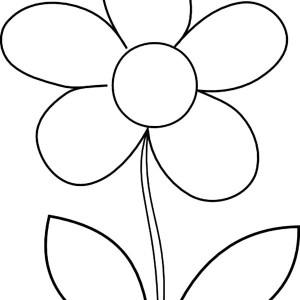 Daisy Flower Coloring Page Daisy Flower Coloring Page Color Nimbus
