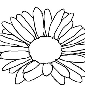 Kids Drawing of Daisy Flower Coloring Page