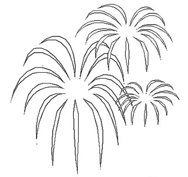 Palm Tree Shaped Fireworks Coloring Page Download Print Online